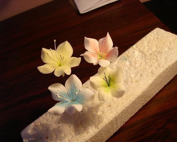 Jednoduché kvietky , Kvety, fotopostupy | Tortyodmamy.sk