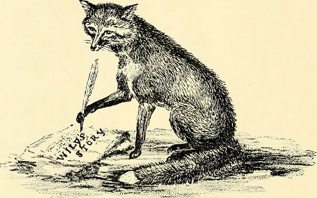 """Image from page 27 of """"The life of a fox written by himself"""" (1920) by Internet Archive Book Images, via Flickr"""