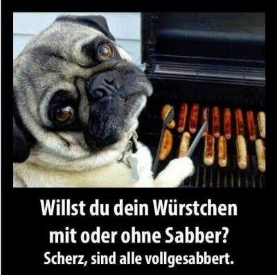 Hund beim Grillen
