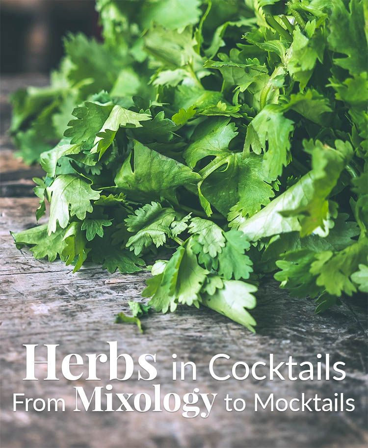 Herbs In Cocktail Drinks - A Cocktail Herb Garden