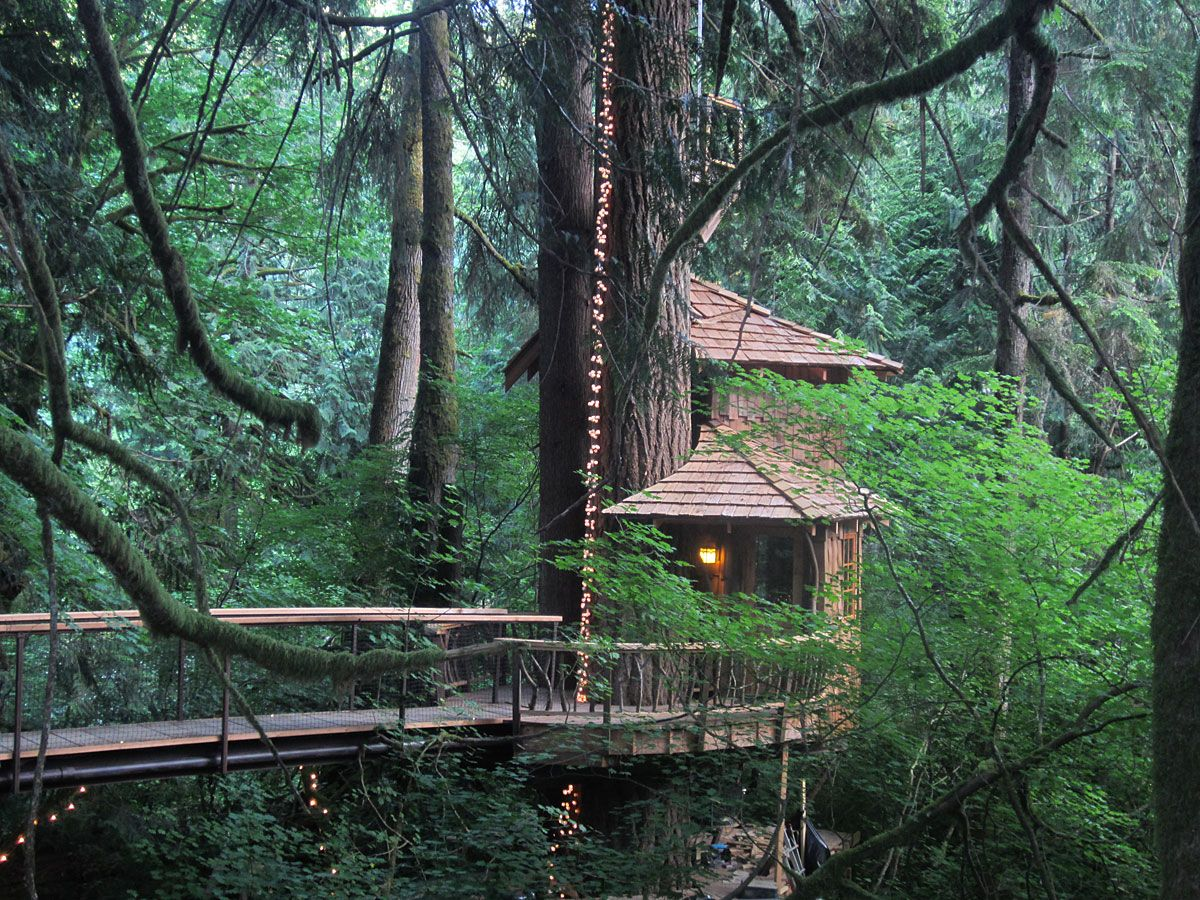 treehouse point fall city washington as seen on treehouse masters