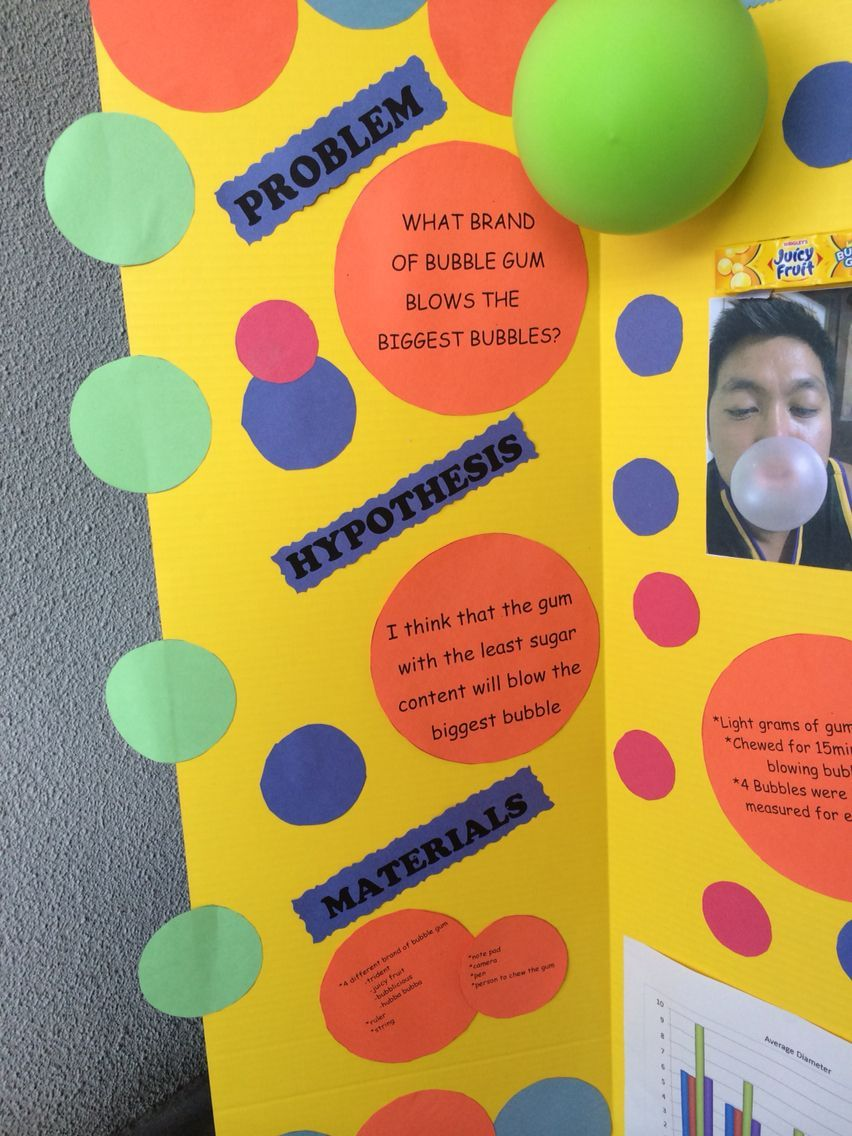 Fair Science Project Board Gum Display Biggest Bubble