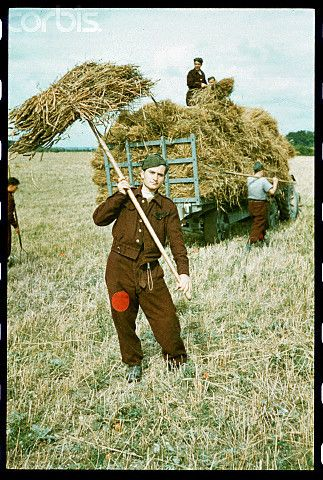 German Prisoners Work on English Farm - HU041127 - Rights Managed - Stock Photo - Corbis