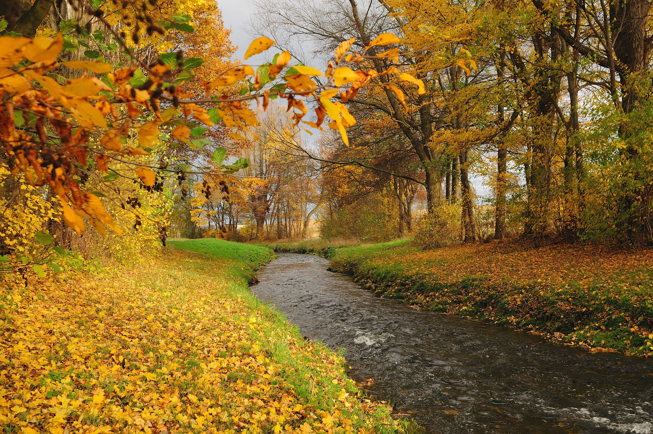 Awesome Autumn River Background Wallpaper Nature And Landscape