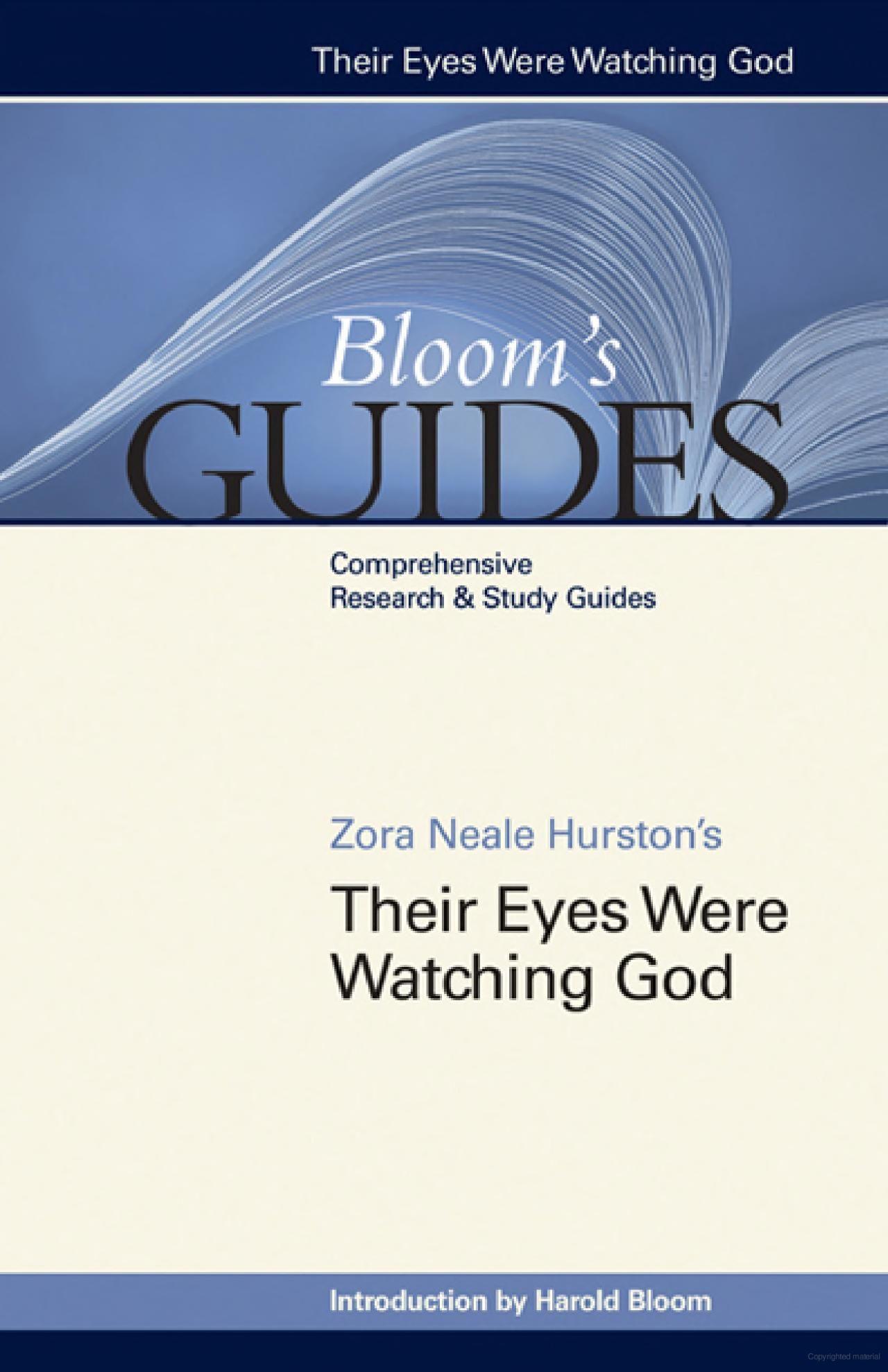 Zora Neale Hurston S Their Eye Were Watching God American Literature Essays Essay