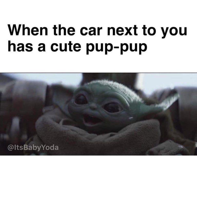 Baby Yoda Need To Get Me A Pup Babyyodamemes Yoda Funny Yoda Meme Funny Star Wars Memes