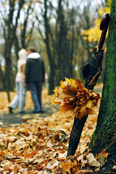 влюблённые пары картинки осень