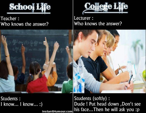 School And College Life Jokes The Difference Of School