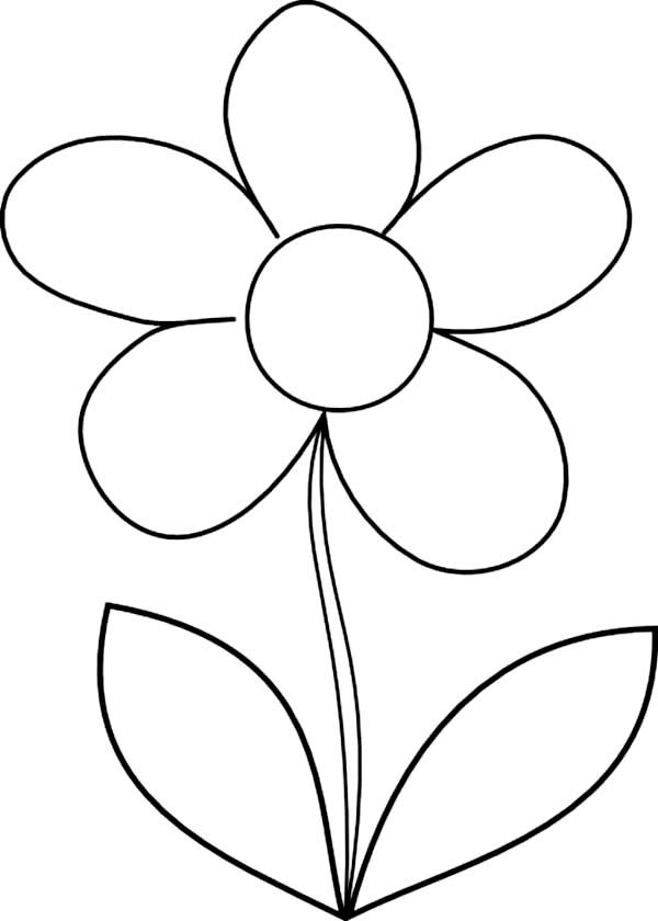 How to draw daisy flower coloring page classroom ideas for How to draw a basic flower