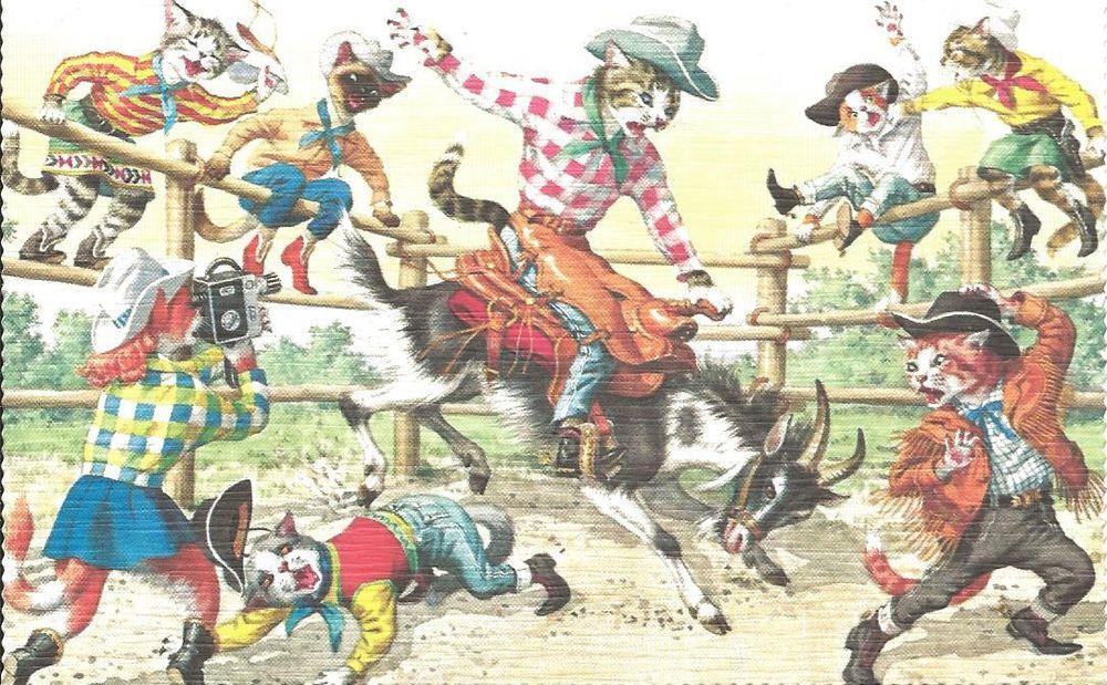 Cartão Postal Alfred Mainzer # 4952-cavalgue, cowboy Rodeio in Colecionáveis, Cartões postais, Animais   eBay