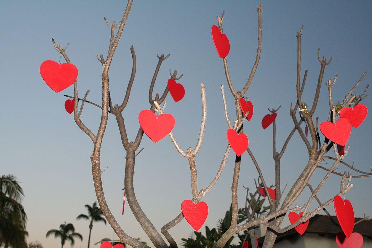 Wer Hat Den Valentinstag In Den Kirchlichen Kalender Aufgenommen  #werhatdenvalentinstagindenkirchlichenkalenderaufgenommen