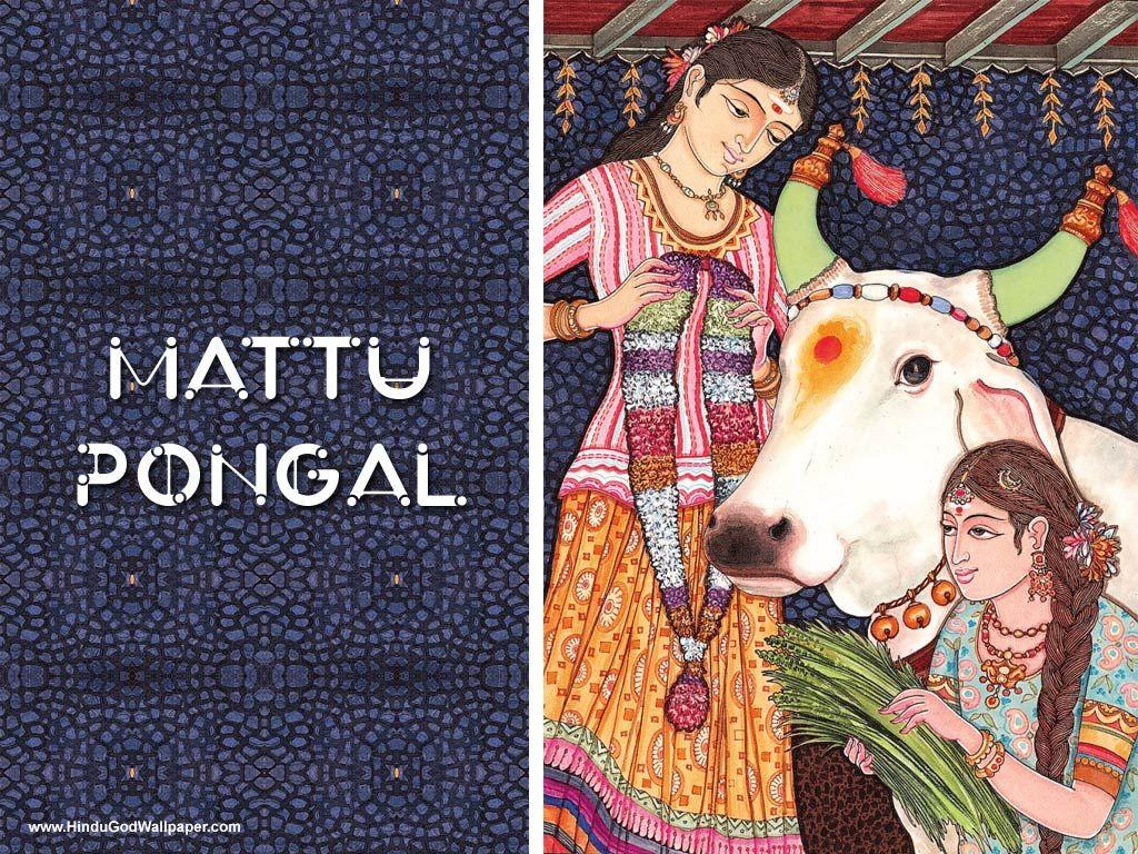 Free Mattu Pongal Wallpapers Download Pongal Wallpapers