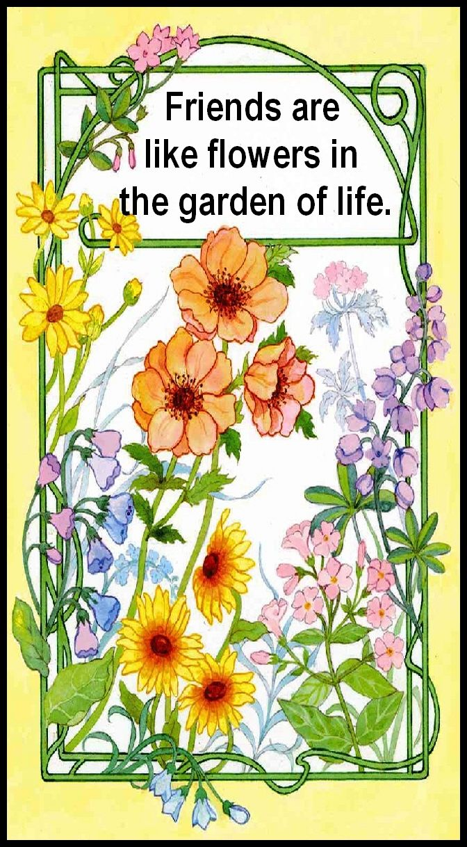 #flowers #blossoms #gardens #bible .. FRIENDS ARE LIKE FLOWERS IN THE