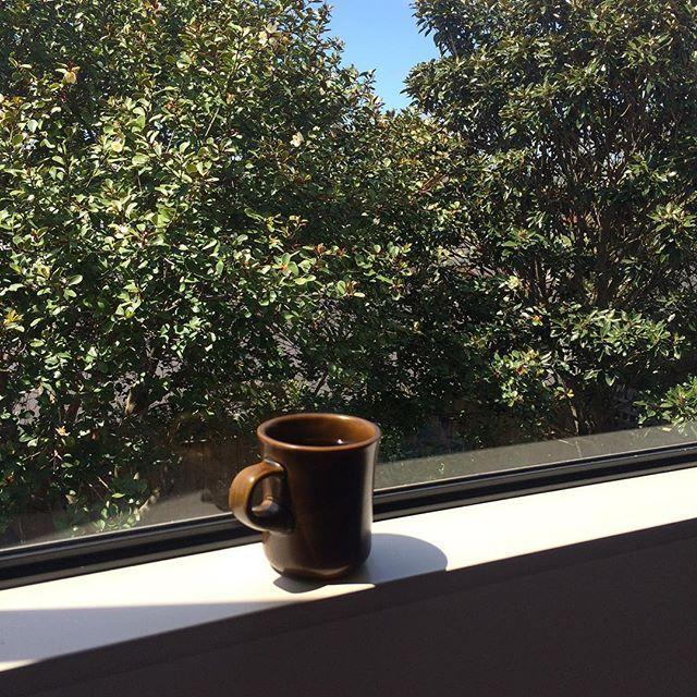 아침 커피