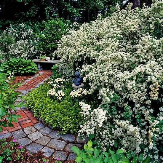 Lush garden architecture garden path paving stones