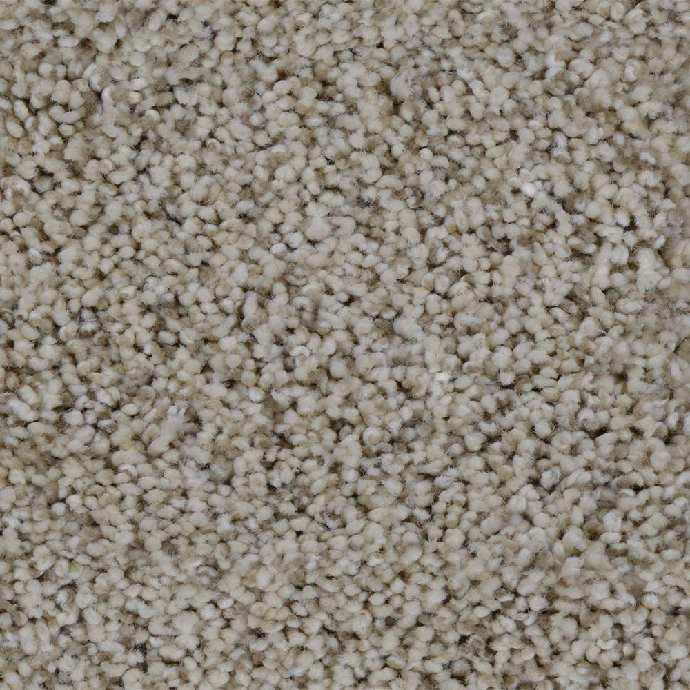 Trendy Threads I Color Lakeview Texture 12 Ft Carpet