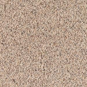 Special Santa Rosa Ii Color Beachcomber 12 Ft Carpet 0317d 24 At The Home Depot