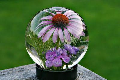 Glass Flower Globes Inside A Glass Globe It Is Pretty Cool
