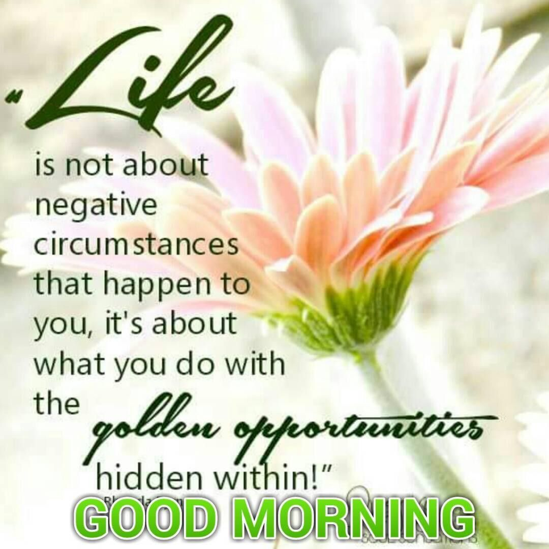 Pin By Carmen On Good Morning Quote Pinterest Morning