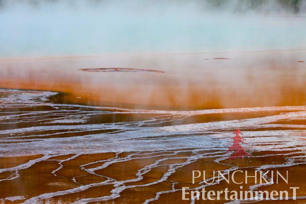 #yellowstonenationalpark #mountains #wyoming #whyoming #stateparks #naturephotography #mountainsandlakes #beautifulscenery #lava #volcanoe #punchkin #punchkinentertainment