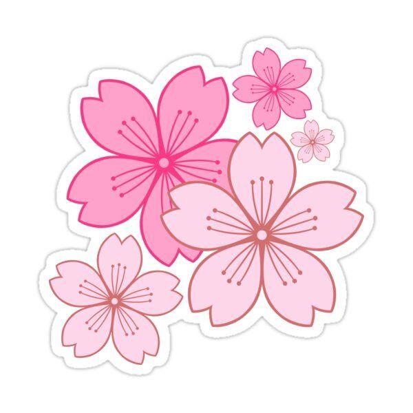 Pink Sakura Blossoms Sticker by kiiroikat