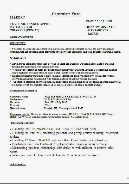 Cv For Students Sample Template Example Ofexcellent Curriculum