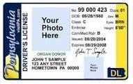1efe9e427ea54f22331fdb3acf4cec38 - How To Get A New Camera Card In Pa