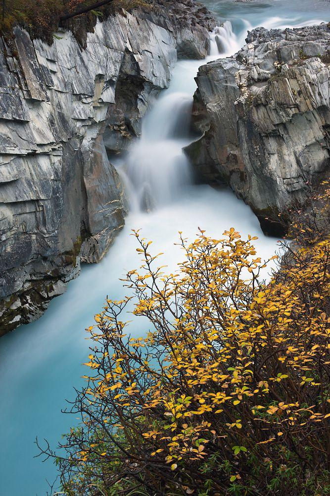 North Saskatchewan River at Coleman Creek, Banff National Park, Alberta