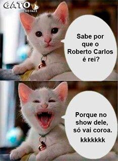 Gato No Facebook Cor De Melo Pinterest Coroa Rei Rei E Piadinhas