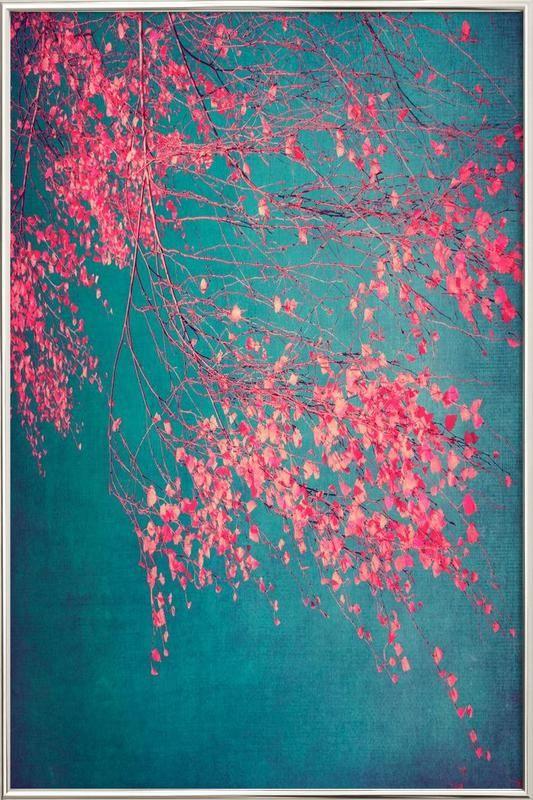 Whispers Of Pink als Poster im Alurahmen von Ingrid Beddoes | JUNIQE