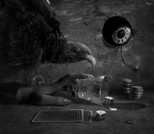 blackoutraven:  cornacchia