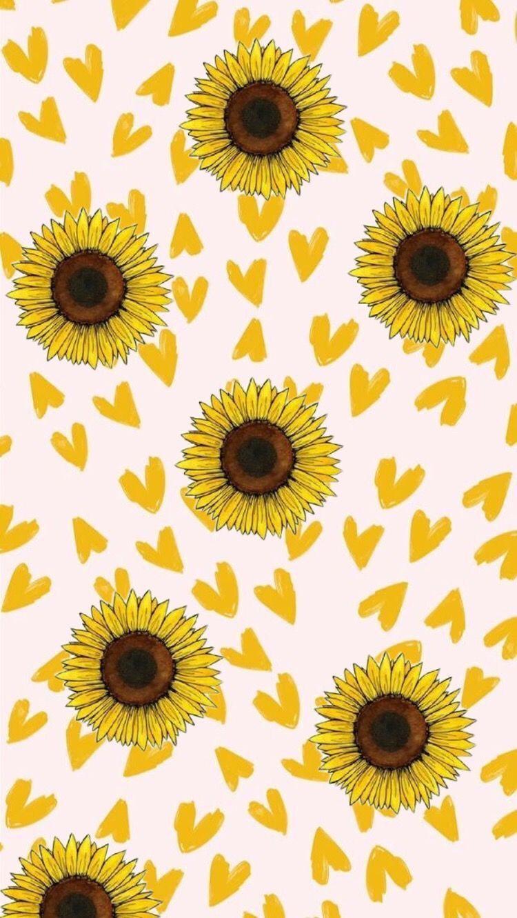 Sunflower Wallpaper Cartoon Sunflower Wallpaper Flower Phone Wallpaper Flower Wallpaper