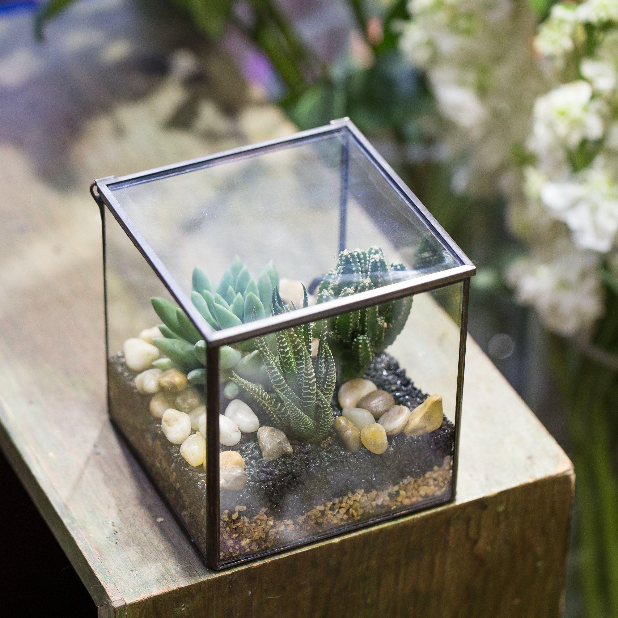 NCYP Vintage Square Geometric Terrarium Tin Sealed Planter