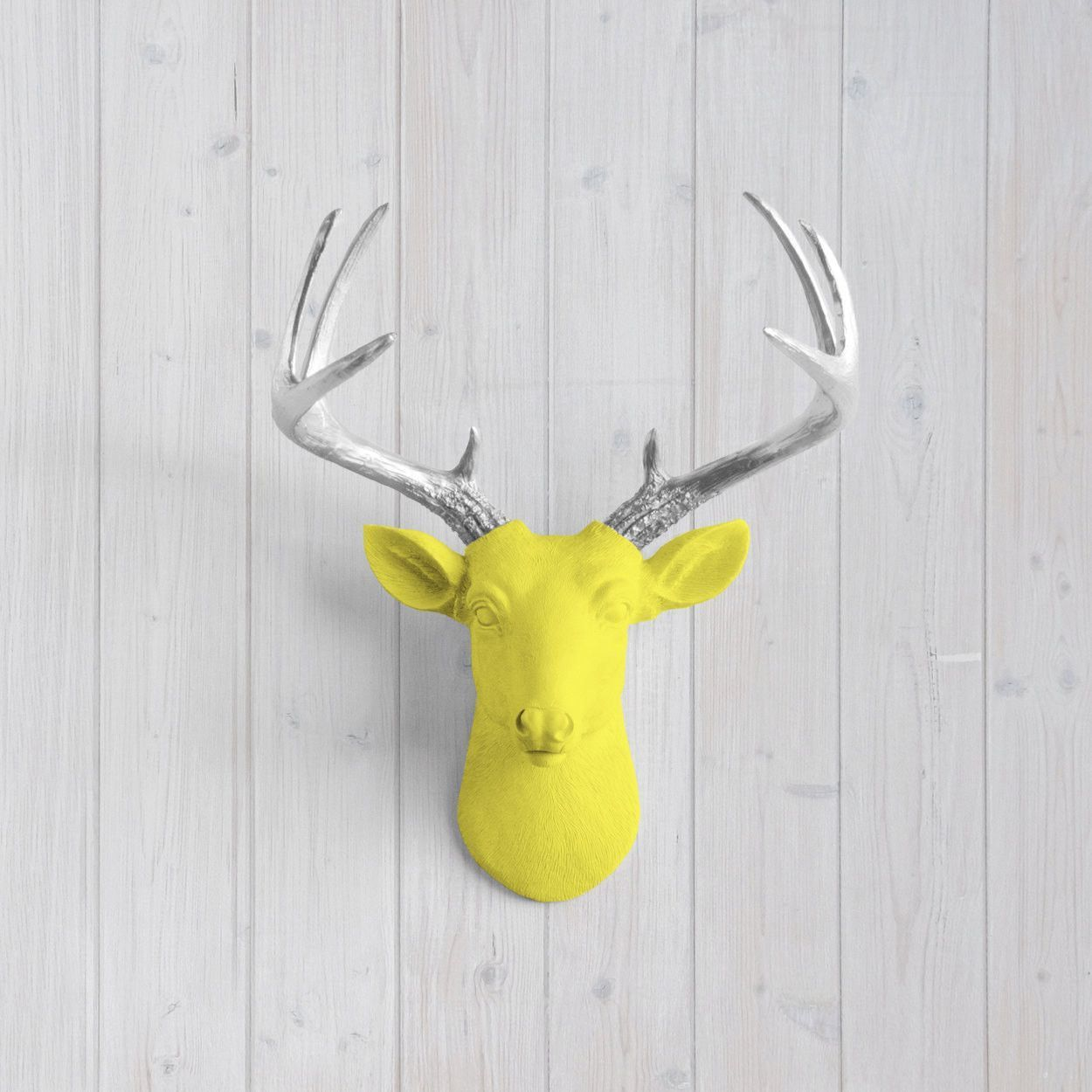 Magnificent Plastic Deer Head Wall Decor Contemporary - The Wall ...
