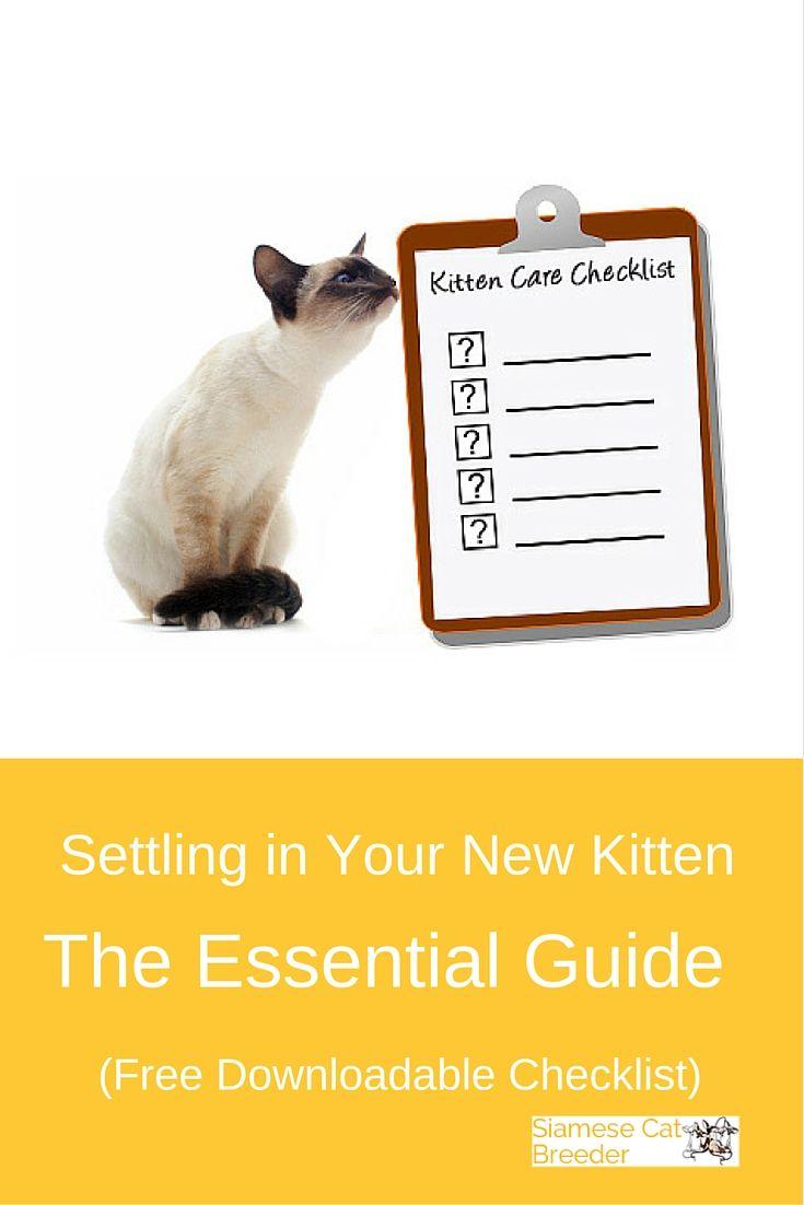 New Kitten Checklist Essential Guide To Settling In A New Kitten Kitten Checklist Kitten Supplies Kitten Care