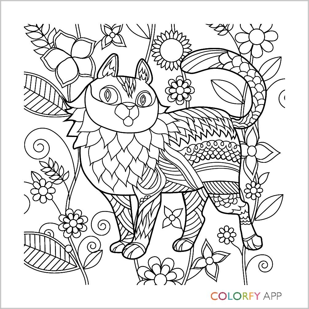 Pin by Jolene Reichert on Books Worth Reading Coloring books