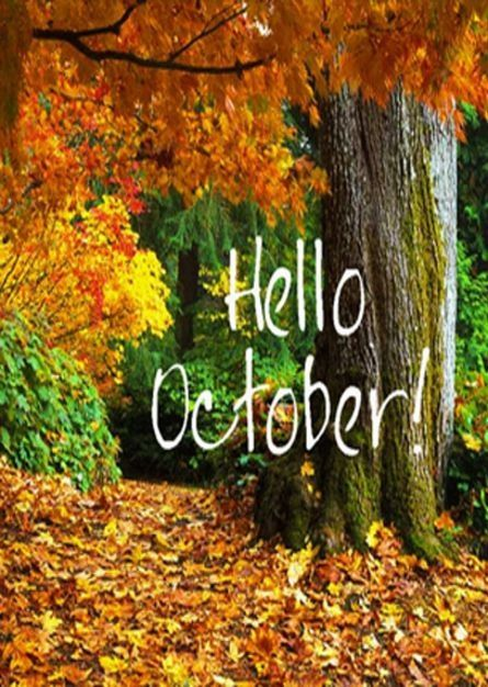 Love fall!!