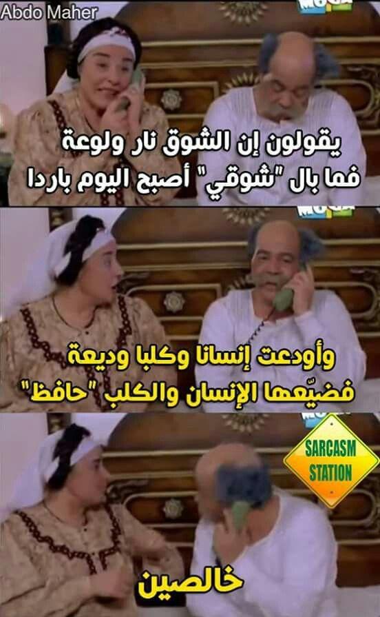 عربي بلاغة أحمد شوقي حافظ ابراهيم القرموطي Funny Comments Fun Quotes Funny Jokes