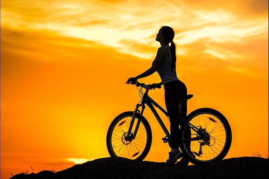 Towards The Sun Black Mountain Bike Bike Silhouette Bike Ride Bicycle wallpapers images photos
