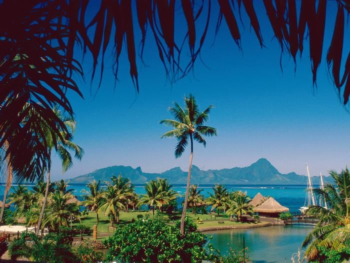 Tropical Island Beach If Only It Weren T So Hot In The