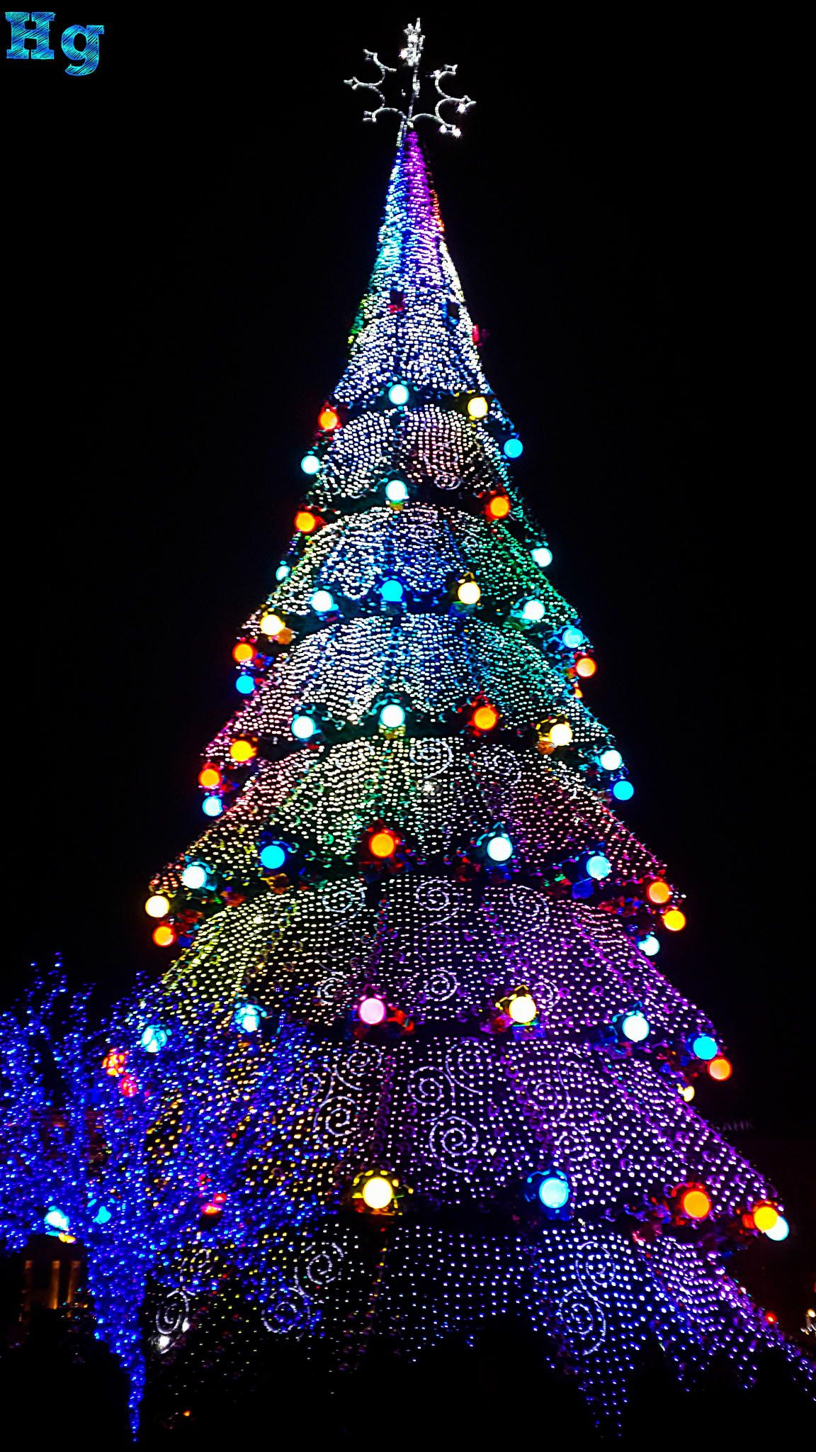 xmas lighting ideas. Xmas Tree . Lighting Ideas H