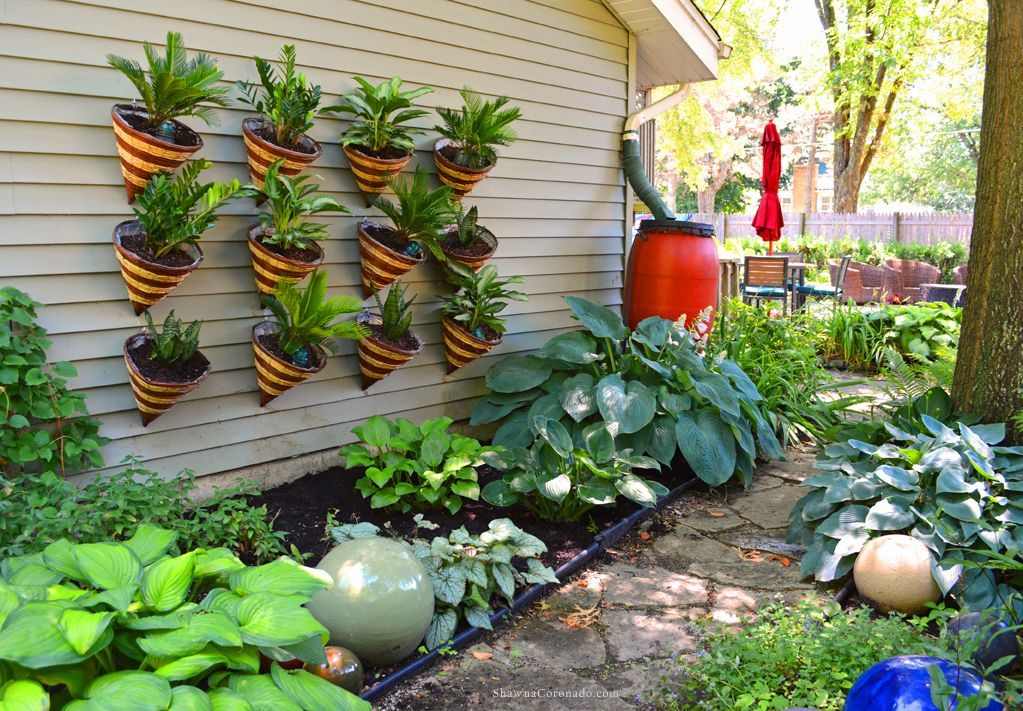 Living Wall Cone Container Garden How To is part of Shade garden Fence - How to plant a living wall cone container garden on a wall, fence, or gate using houseplants that are drought tolerant shade lovers