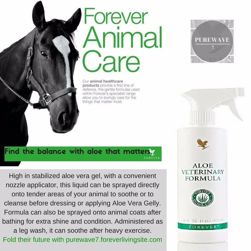 Aloe Veterinary Formula that soothes and cleanses tender