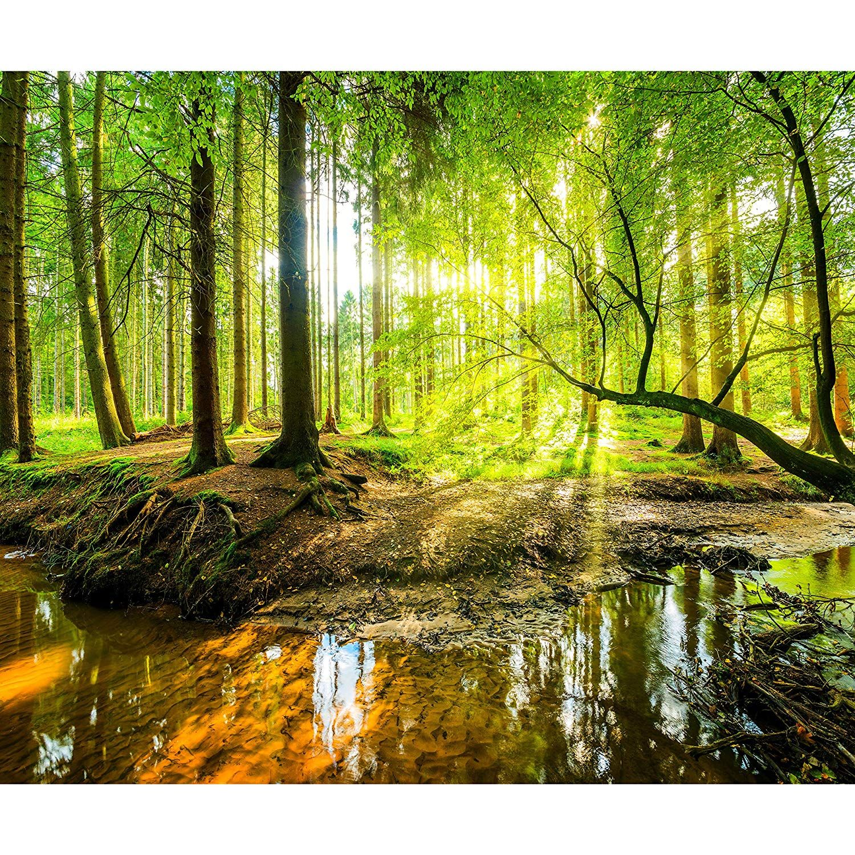 Fototapete Wald 3D 350x256 cm XXL Tapete