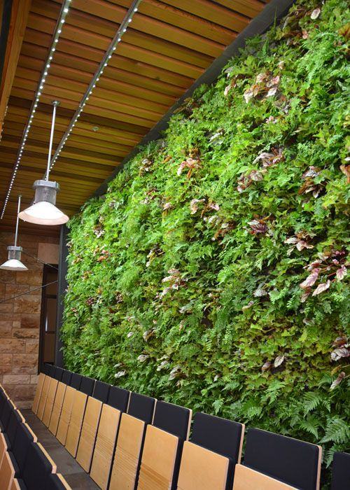 Green Wall Lighting Sunlite Science And Technology Inc In Led