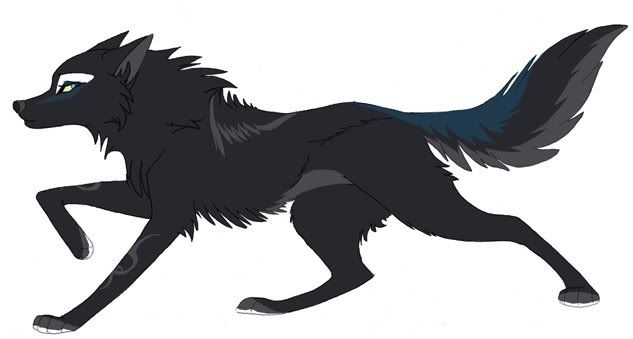 Pics For Black Wolf Anime Anime Wolf Wolf Character Canine Art
