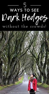 How to see the Dark Hedges in Northern Ireland without the crowds Since the Dar How to see the Dark Hedges in Northern Ireland without the crowds Since the Dar