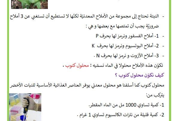 تغطية حاجة النبات الأخضر إلى الماء Recherche Google Learning Arabic Math Learning