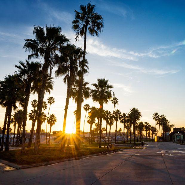 University Of California Los Angeles Ucla Pre Master S Prep Readies Students Fo University Of California Los Angeles University Tips University Of California