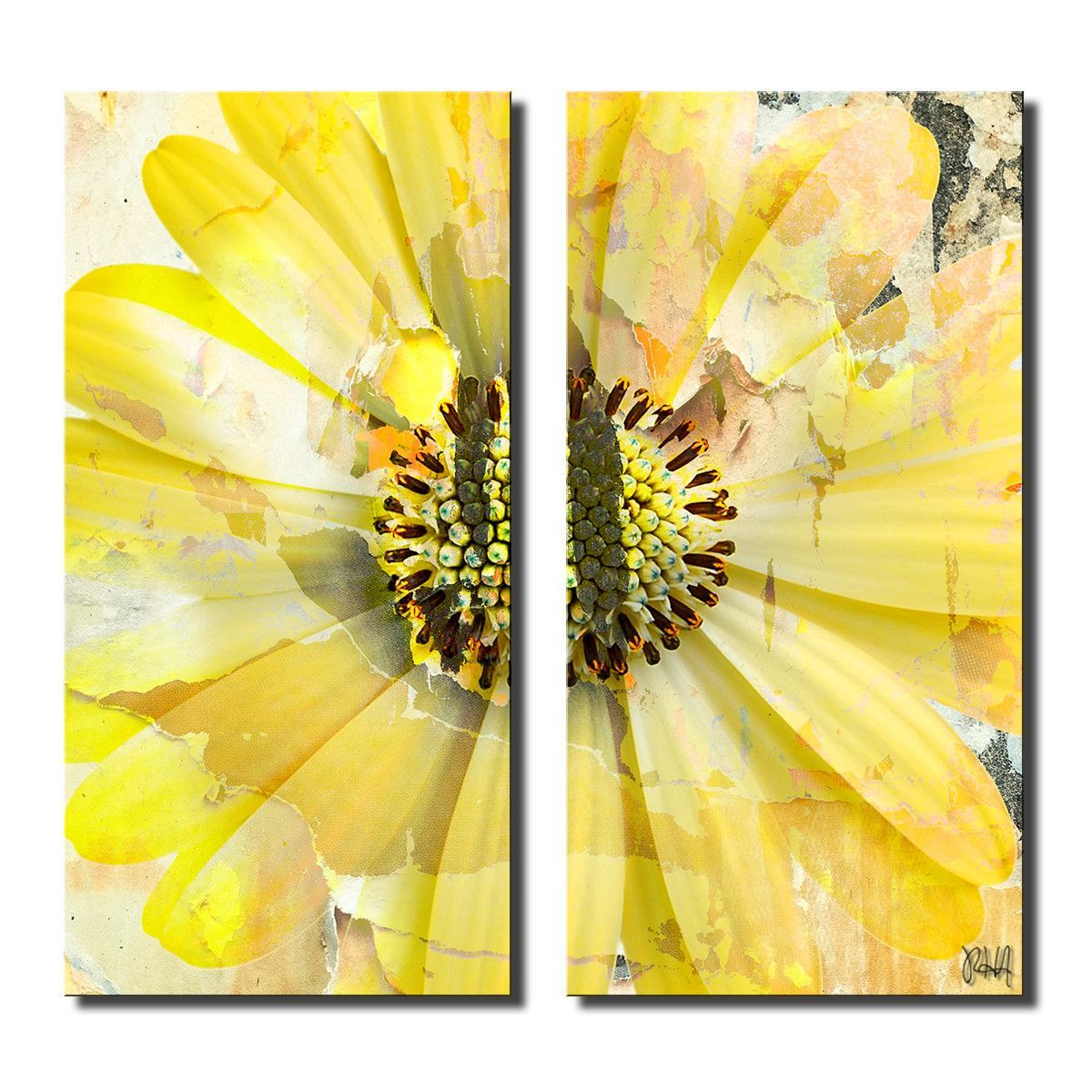Painted Petals XCV 2 Piece Graphic Art on Canvas Set   Products ...